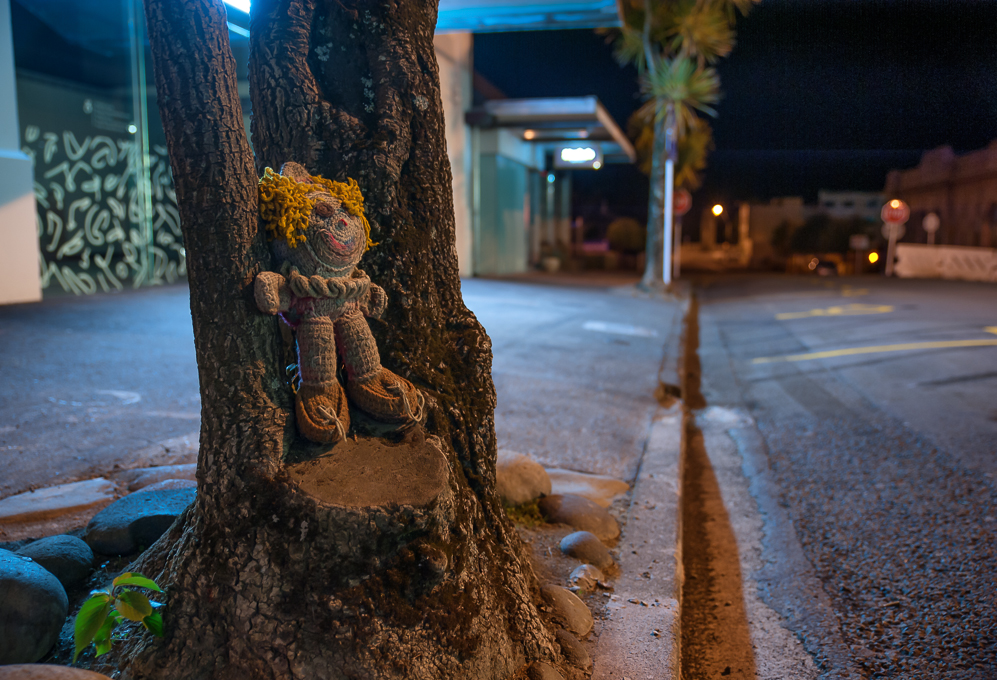 Found this little guy playing Hide And Seek on the streets of New Plymouth.